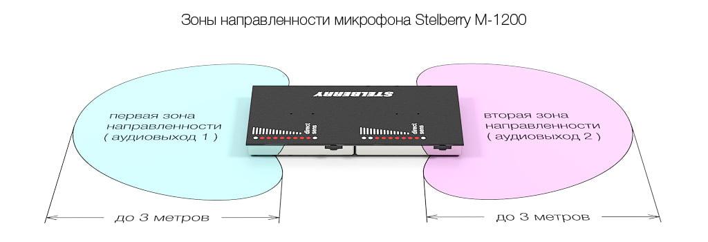 Зона направленности микрофона STELBERRY M-1200